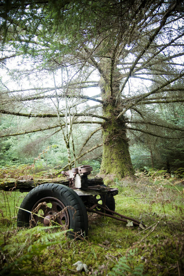 Old tractor abandoned in the middle of the forest corroded by rust and corrosion