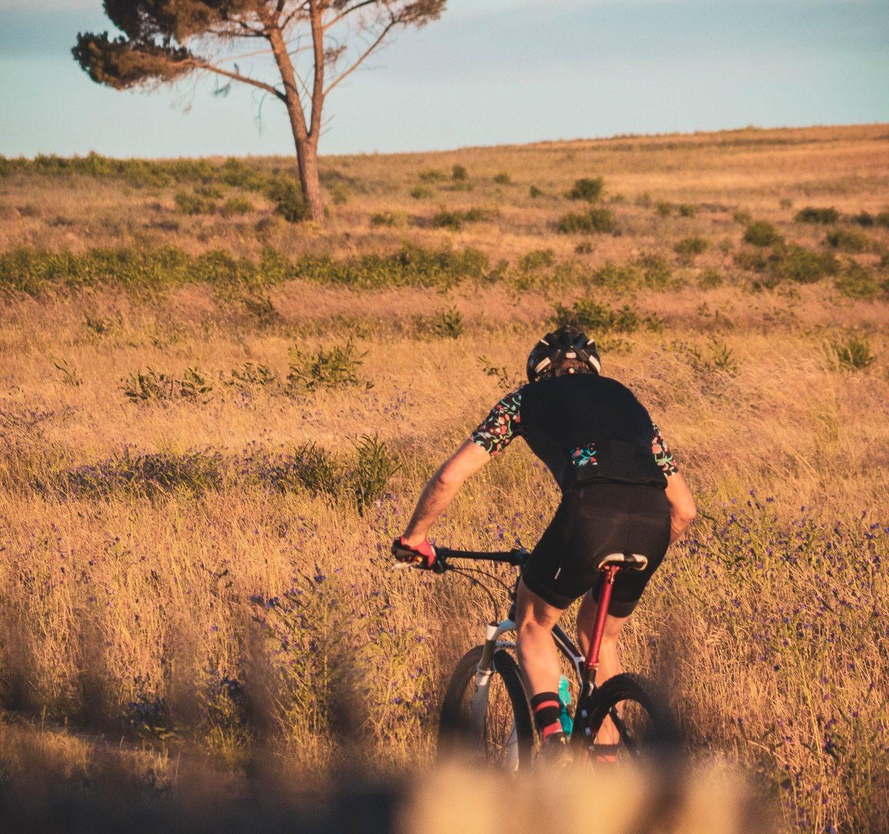 MTB kolesa
